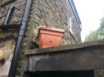 flower pot bait hive on roof at Brinscall Hall